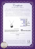 product certificate: FW-B-AA-910-P-Isabella