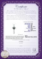 product certificate: FW-B-AAA-89-P-Key