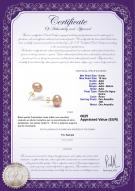product certificate: P-910-E