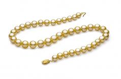 Oro 9-11.7mm Calidad AAA Collar de PerlasMar del Sur y Oro amarillo 14K