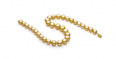 Oro 11.53-15.2mm Calidad AAA+ Collar de PerlasMar del Sur y Oro amarillo 14K