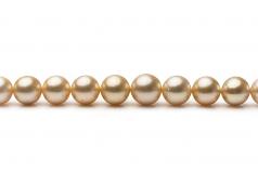 18 pulgadas Oro 9.2-12.8mm Calidad AA Collar de PerlasMar del Sur y Oro amarillo 14K